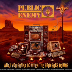 Public Enemy - What you...