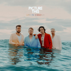 Picture This - Life in...