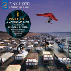 Pink Floyd - A momentary...