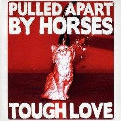 Pulled Apart By Horses -...