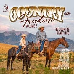 Andrew Bird - Break it...