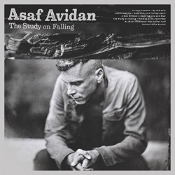 Asaf Avidan - The study on...