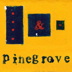 Pinegrove - Everything so...
