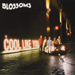 Blossom - Cool like you,...