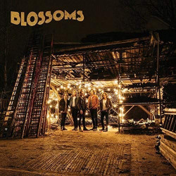Blossoms - Blossoms, 1CD, 2016