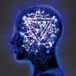 Enter Shikari - The...