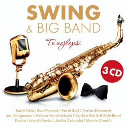 Kompilace - Swing & Big...