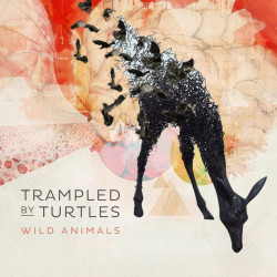 Trampled By Turtles - Wild...