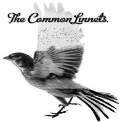 The Common Linnets - The...