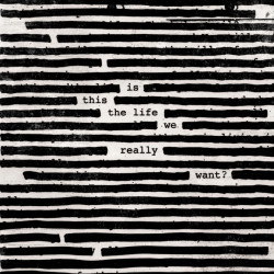 Roger Waters - Is this the...