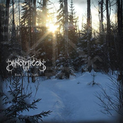 Panopticon - Roads to the...