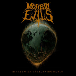 Morbid Evils - In hate with...
