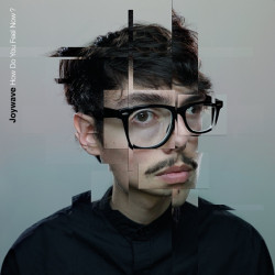 Joywave - How Do You Feel...