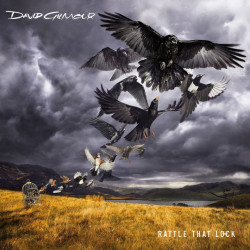 David Gilmour - Rattle that...