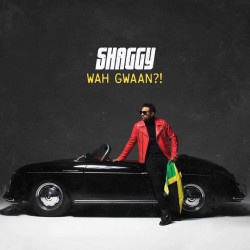 Shaggy - Wah gwaan?!, 1CD,...
