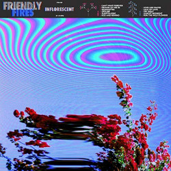 Friendly Fires -...