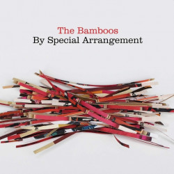 The Bamboos - By special...